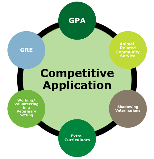 competitive application: GPA, GRE, working/volunteering in a veterinary setting, extracurriculars, shadowing veterinarians, animal-related community service